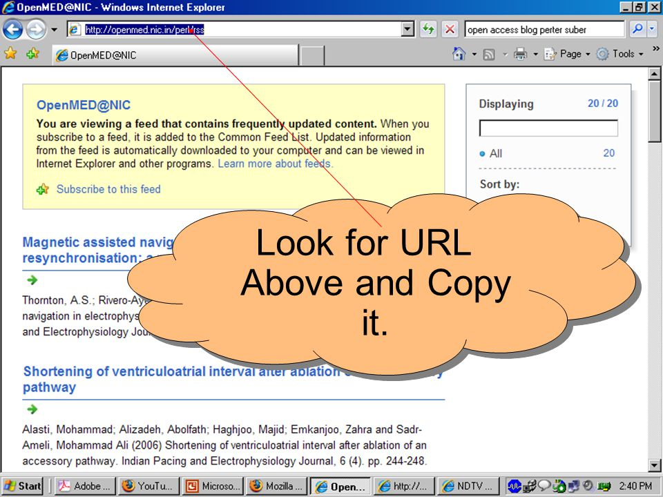 Look for URL Above and Copy it.