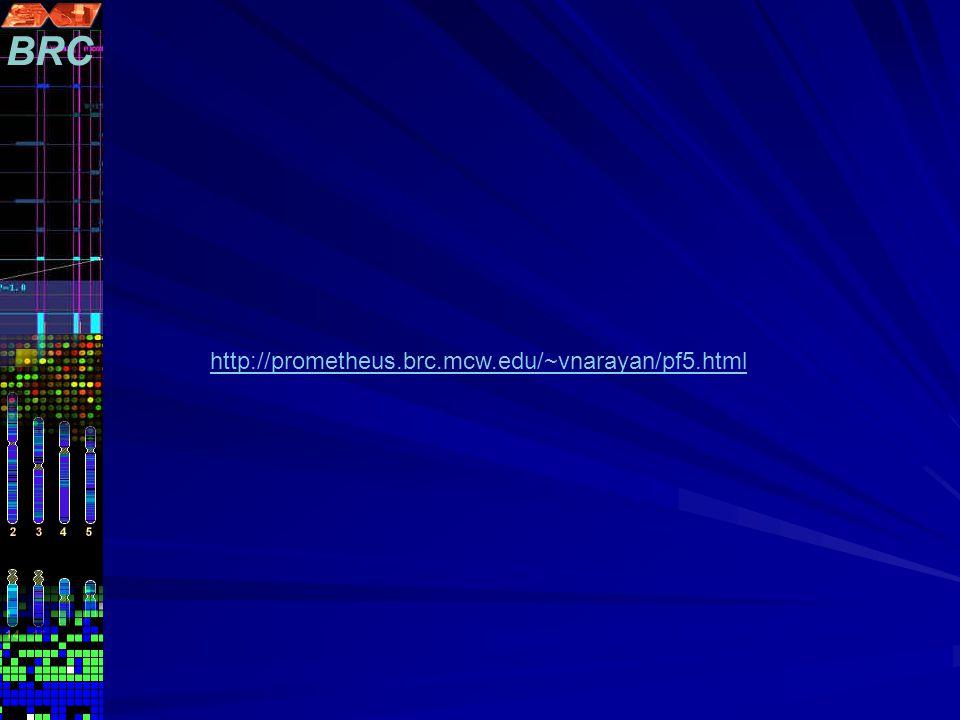 http://prometheus.brc.mcw.edu/~vnarayan/pf5.html