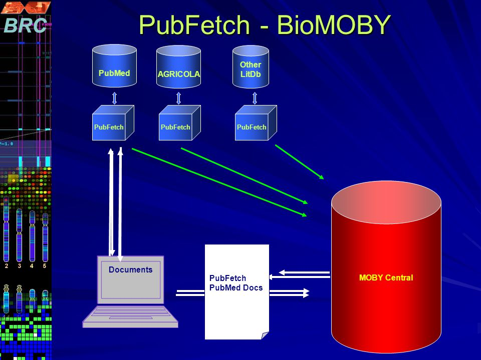 Cancer+AN D+rat MOBY Central PubMed PubFetch Other LitDbAGRICOLA PMIDs Documents PubFetch – PMID PubFetch- AGRICOLA ID PubFetch PubMed Docs PubFetch - BioMOBY PubFetch