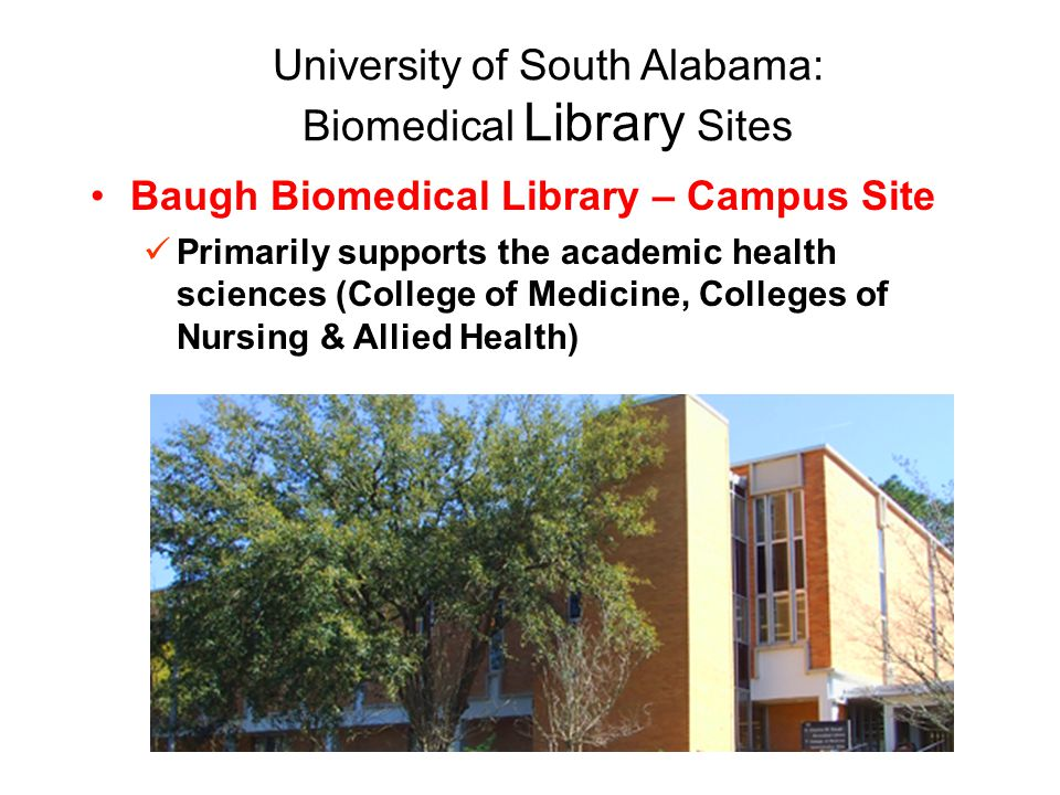 University of South Alabama: Biomedical Library Sites Baugh Biomedical Library – Campus Site Primarily supports the academic health sciences (College of Medicine, Colleges of Nursing & Allied Health)