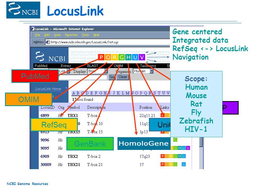 NCBI Genome Resources LocusLink OMIM RefSeq GenBank UniGene dbSNP PubMed Gene centered Integrated data RefSeq LocusLink Navigation Scope: Human Mouse Rat Fly Zebrafish HIV-1
