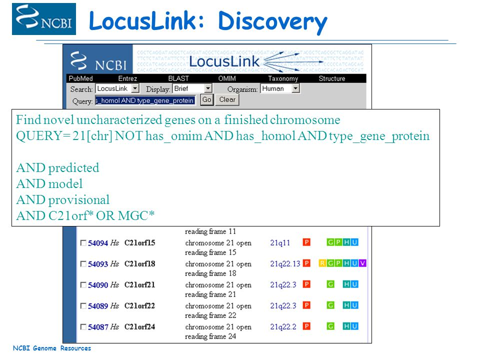 NCBI Genome Resources LocusLink: Discovery Find novel uncharacterized genes on a finished chromosome QUERY= 21[chr] NOT has_omim AND has_homol AND type_gene_protein AND predicted AND model AND provisional AND C21orf* OR MGC*