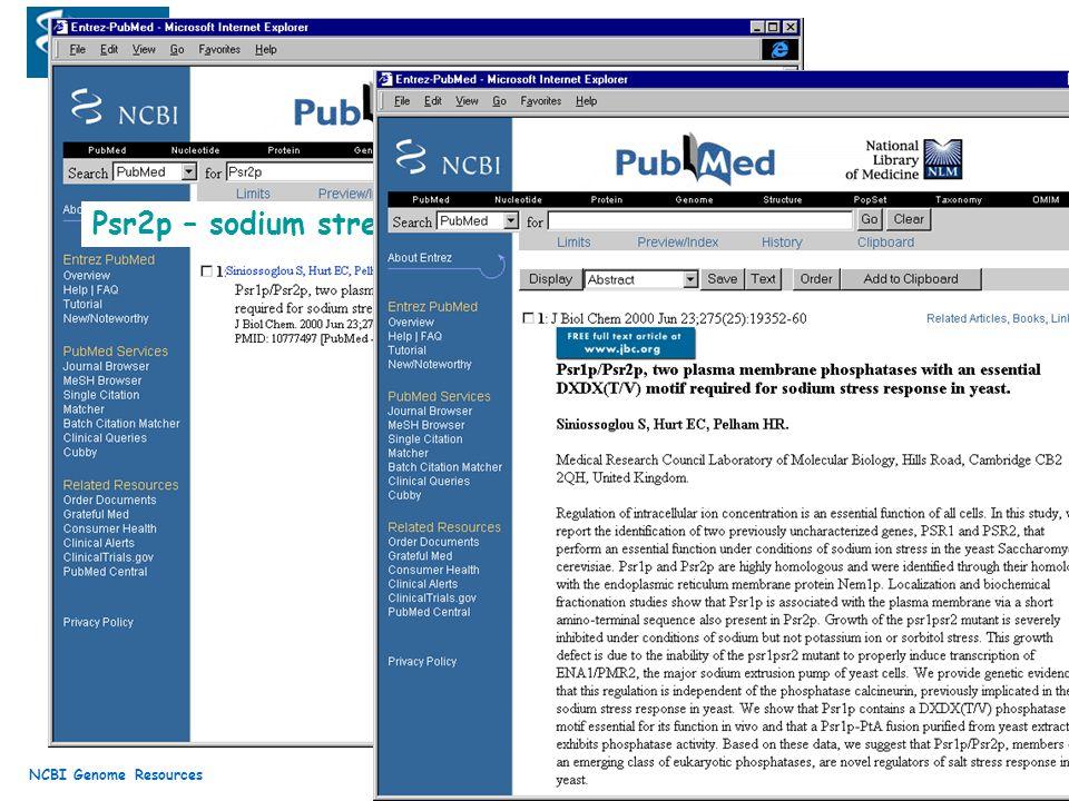 Psr2p – sodium stress response in yeast