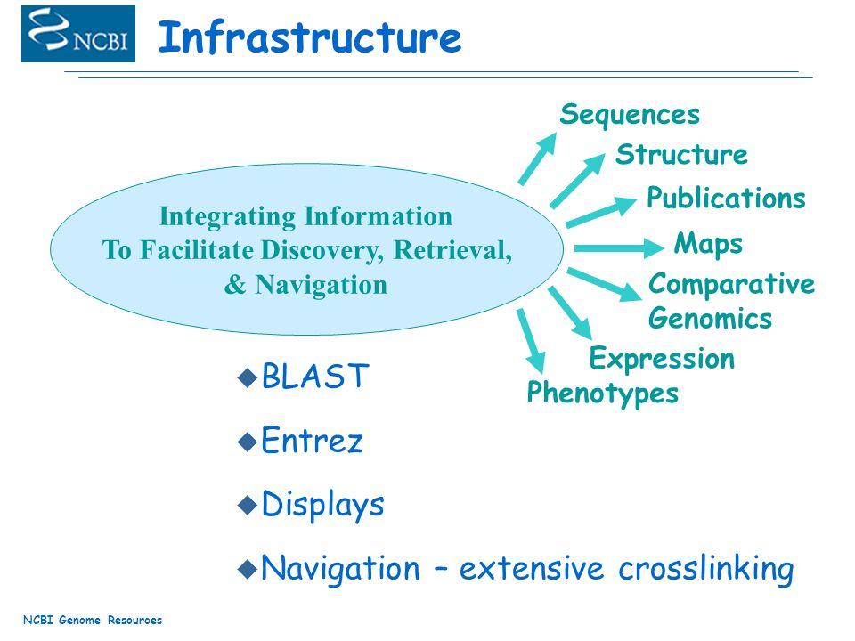 NCBI Genome Resources Infrastructure u BLAST u Entrez u Displays u Navigation – extensive crosslinking Integrating Information To Facilitate Discovery, Retrieval, & Navigation Sequences Publications Structure Phenotypes Expression Maps Comparative Genomics