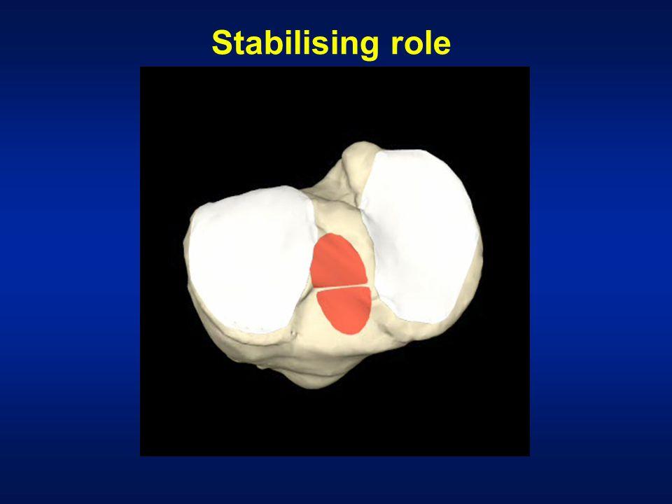 Stabilising role