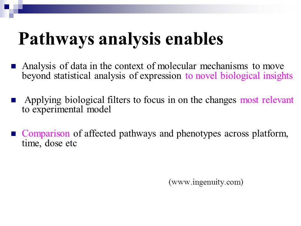 What regulatory relationships exist between the genes, proteins in my dataset.