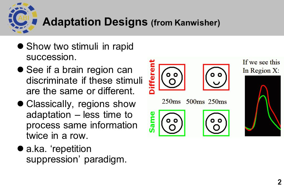 2 Adaptation Designs (from Kanwisher) Show two stimuli in rapid succession. See if a brain region can discriminate if these stimuli are the same or di