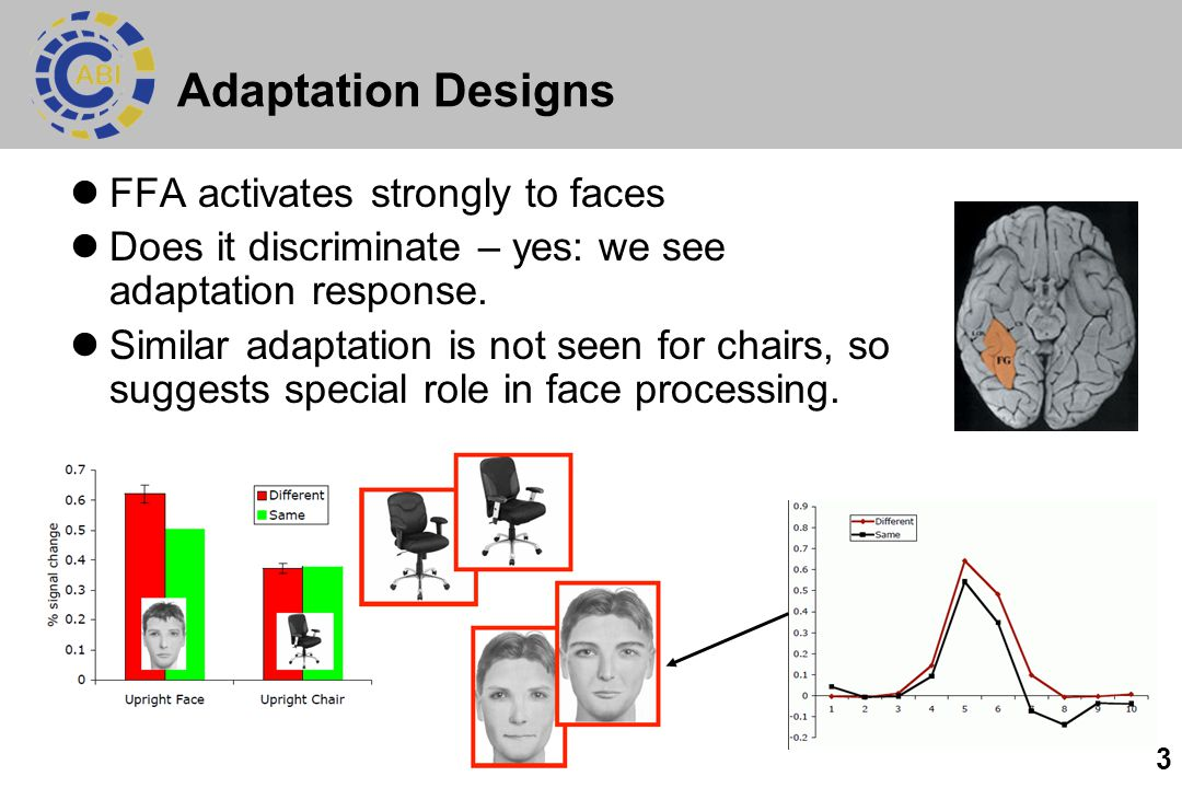 3 Adaptation Designs FFA activates strongly to faces Does it discriminate – yes: we see adaptation response. Similar adaptation is not seen for chairs