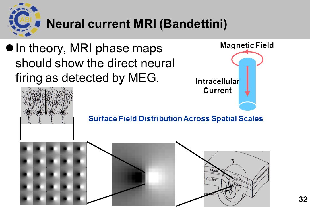 32 Neural current MRI (Bandettini) In theory, MRI phase maps should show the direct neural firing as detected by MEG. Intracellular Current Magnetic F