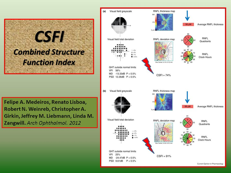 CSFI Combined Structure Function Index 8 Felipe A.