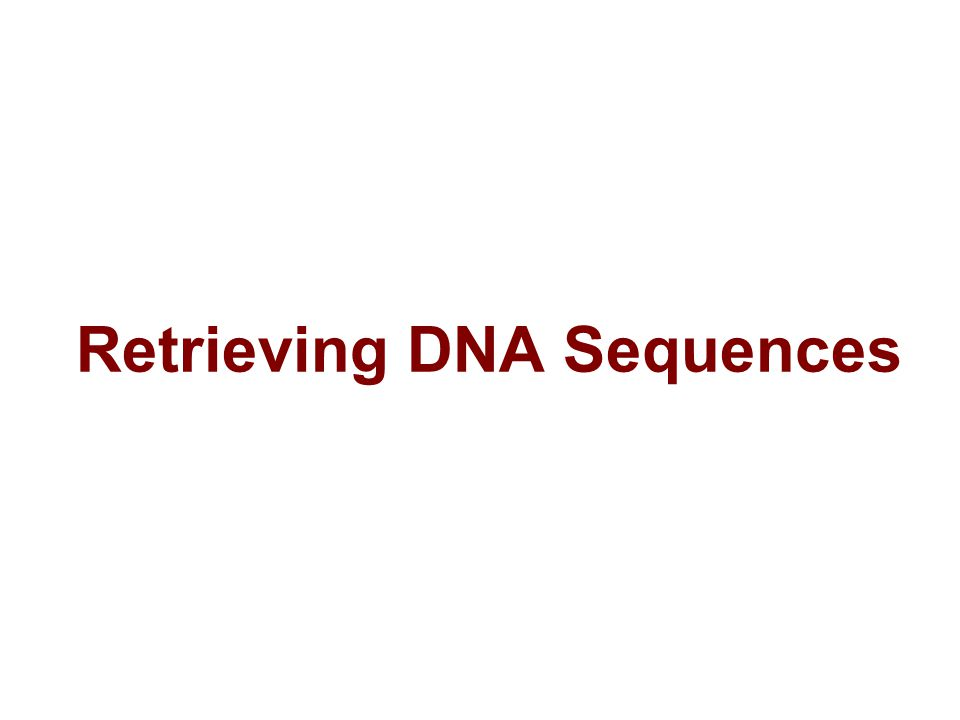 Retrieving DNA Sequences