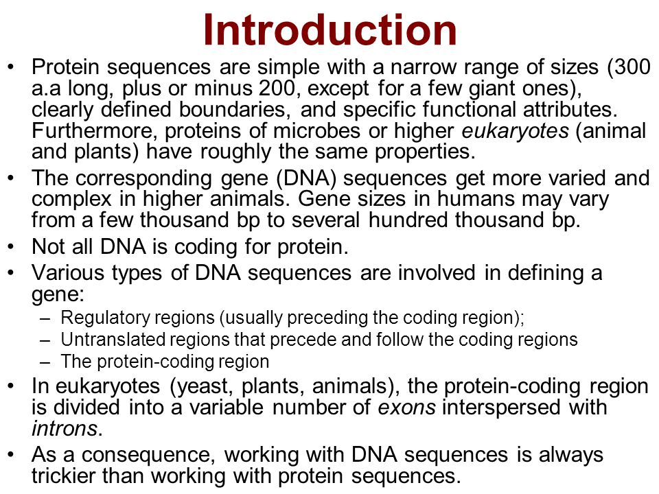 Going from protein sequences to DNA sequences In databases, the correspondence between protein and DNA sequences is not one-to-one.