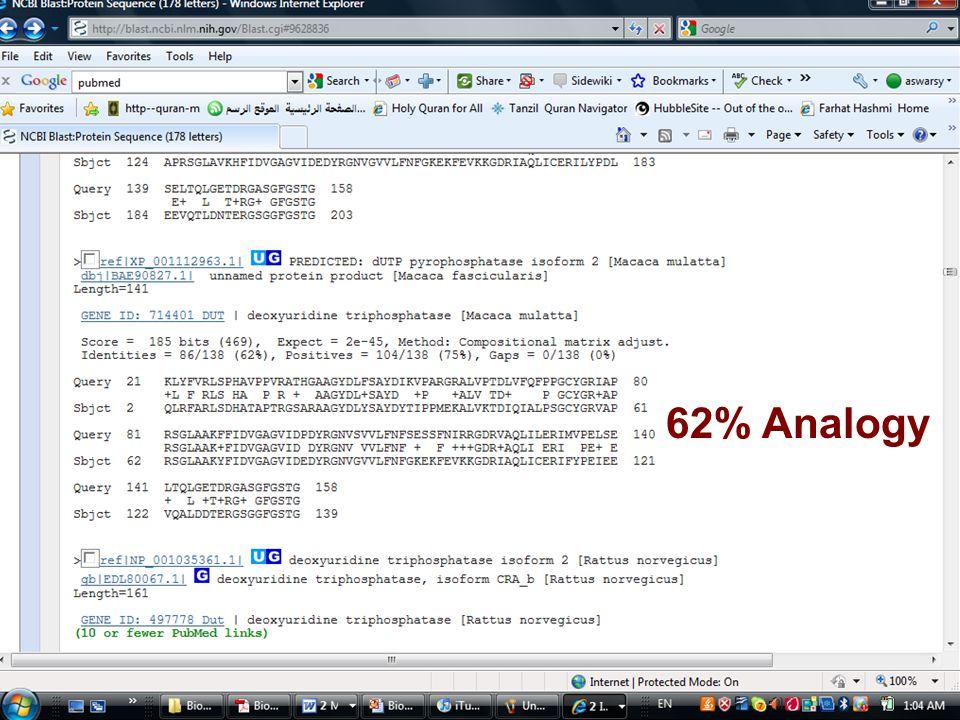 62% Analogy