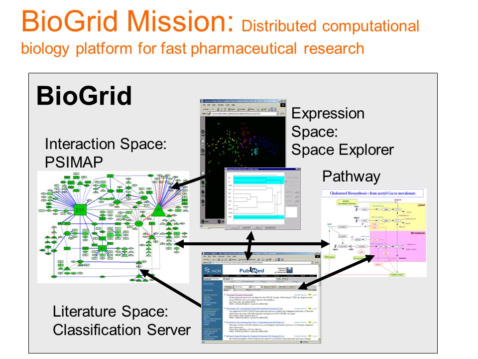 Expression Space: Space Explorer Pathway Space: BioGrid Interaction Space: PSIMAP Literature Space: Classification Server BioGrid Mission: Distributed