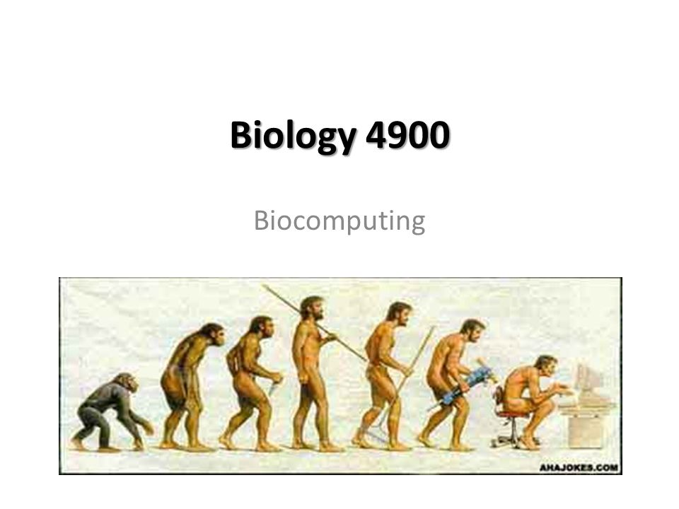 Biology 4900 Biocomputing
