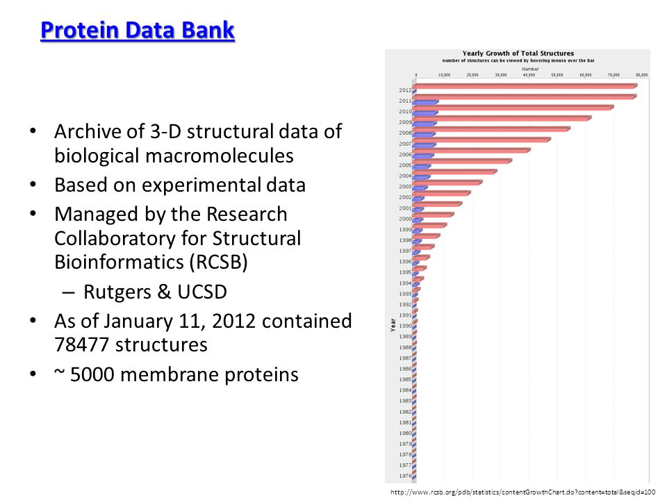 Protein Data Bank Protein Data Bank Archive of 3-D structural data of biological macromolecules Based on experimental data Managed by the Research Col