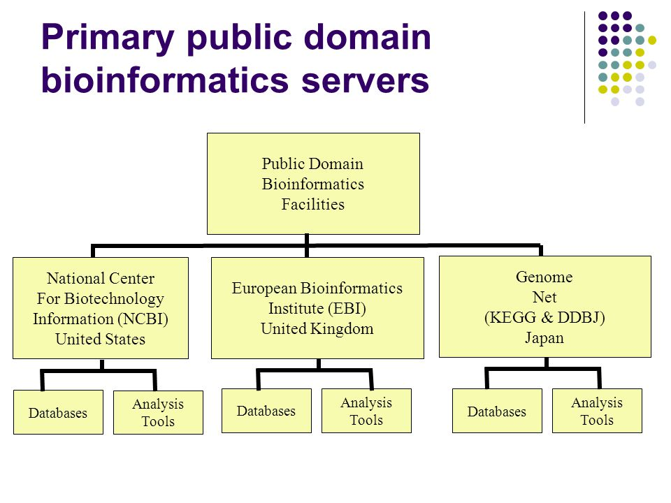 Primary public domain bioinformatics servers Public Domain Bioinformatics Facilities European Bioinformatics Institute (EBI) United Kingdom National Center For Biotechnology Information (NCBI) United States Genome Net (KEGG & DDBJ) Japan Databases Analysis Tools Databases Analysis Tools Databases Analysis Tools