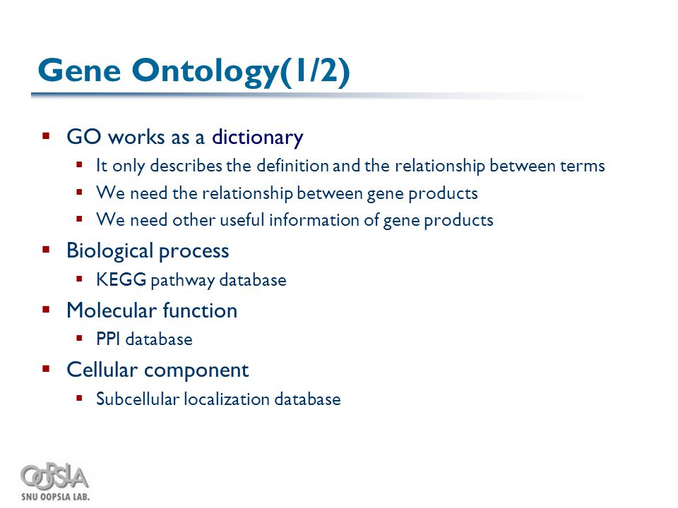 Gene Ontology(1/2)  GO works as a dictionary  It only describes the definition and the relationship between terms  We need the relationship between gene products  We need other useful information of gene products  Biological process  KEGG pathway database  Molecular function  PPI database  Cellular component  Subcellular localization database