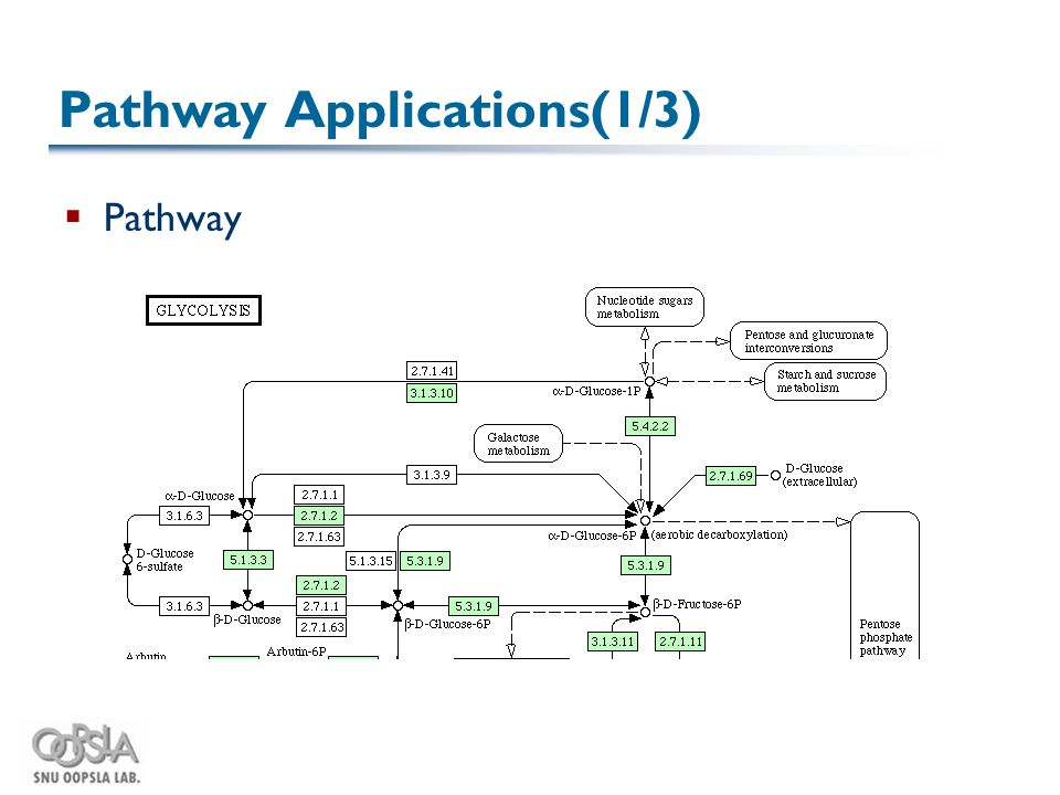 Pathway Applications(1/3)  Pathway