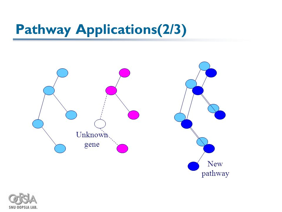Pathway Applications(2/3) Unknown gene New pathway