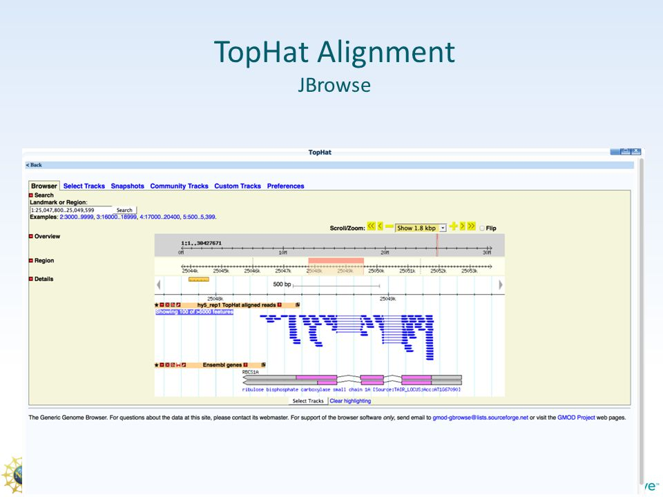 TopHat Alignment JBrowse