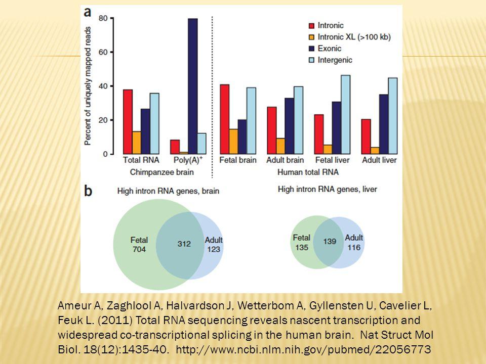 Ameur A, Zaghlool A, Halvardson J, Wetterbom A, Gyllensten U, Cavelier L, Feuk L. (2011) Total RNA sequencing reveals nascent transcription and widesp