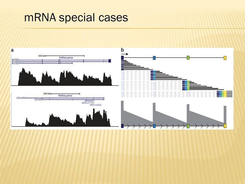 mRNA special cases