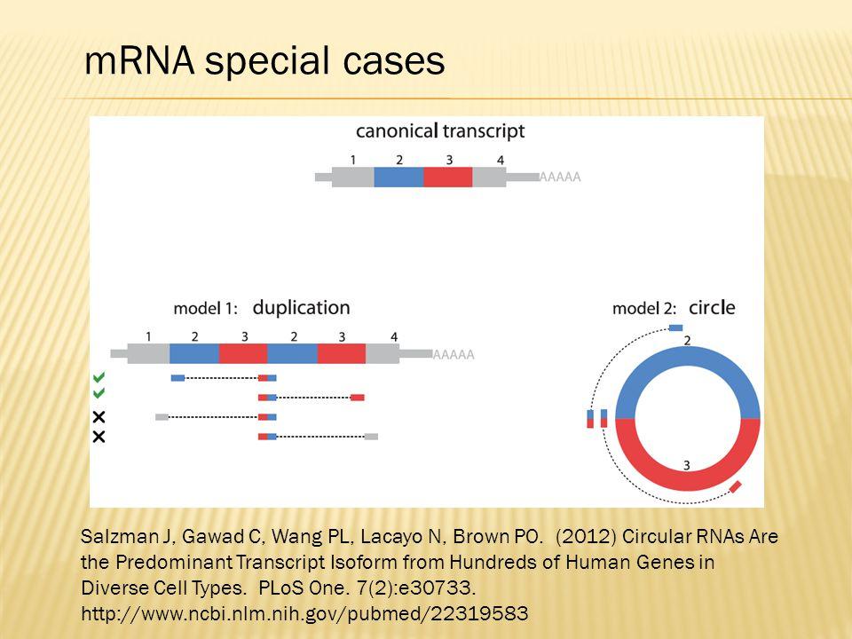 Salzman J, Gawad C, Wang PL, Lacayo N, Brown PO. (2012) Circular RNAs Are the Predominant Transcript Isoform from Hundreds of Human Genes in Diverse C