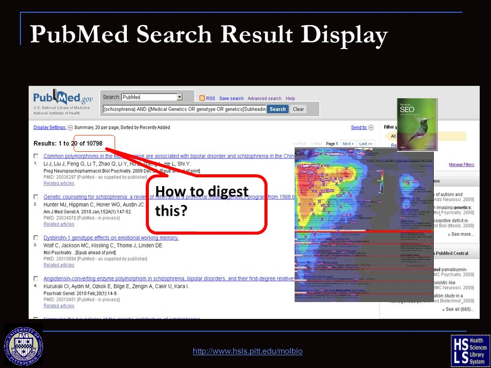 PubMed Search Result Display http://www.hsls.pitt.edu/molbio How to digest this?