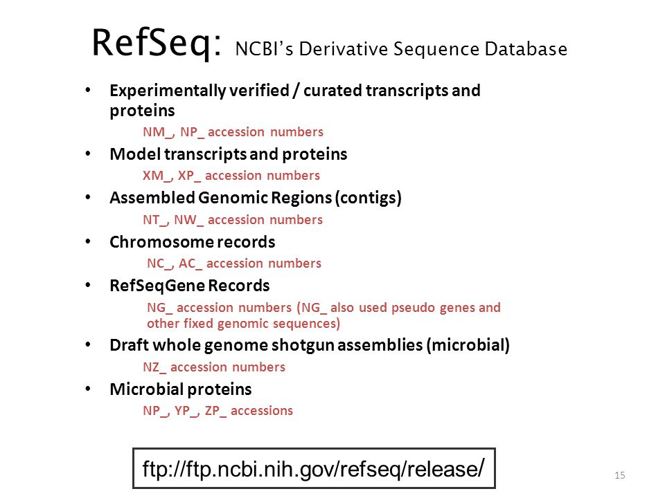 RefSeq: NCBI's Derivative Sequence Database Experimentally verified / curated transcripts and proteins NM_, NP_ accession numbers Model transcripts and proteins XM_, XP_ accession numbers Assembled Genomic Regions (contigs) NT_, NW_ accession numbers Chromosome records NC_, AC_ accession numbers RefSeqGene Records NG_ accession numbers (NG_ also used pseudo genes and other fixed genomic sequences) Draft whole genome shotgun assemblies (microbial) NZ_ accession numbers Microbial proteins NP_, YP_, ZP_ accessions ftp://ftp.ncbi.nih.gov/refseq/release / 15