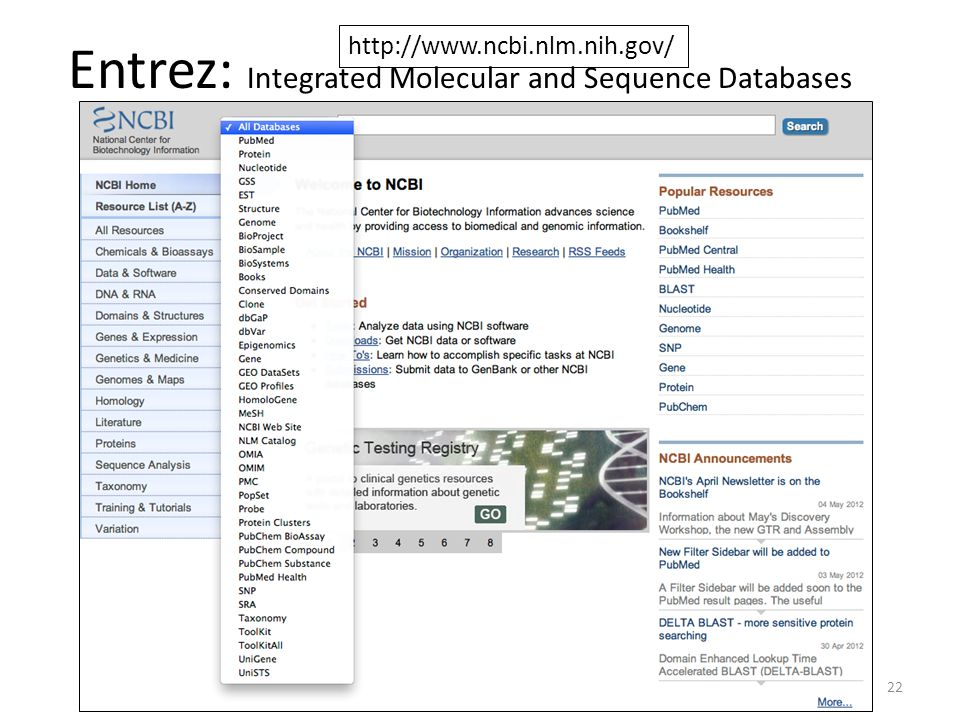 Entrez: Integrated Molecular and Sequence Databases 22 http://www.ncbi.nlm.nih.gov/