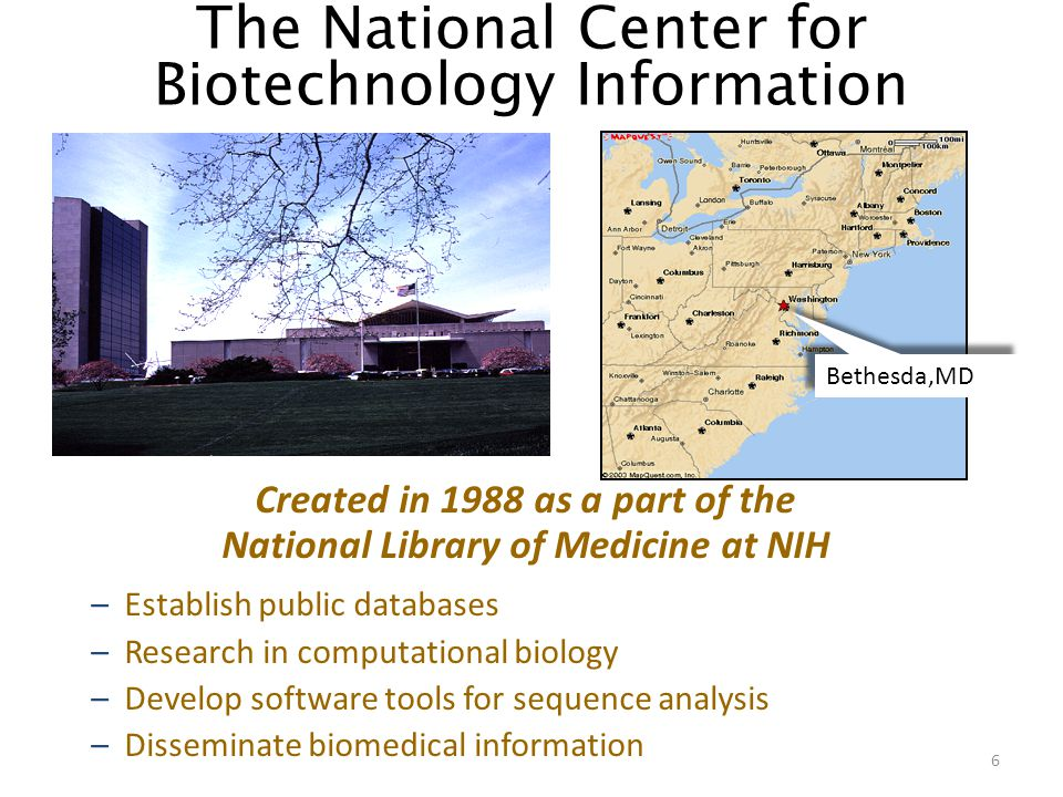The National Center for Biotechnology Information Created in 1988 as a part of the National Library of Medicine at NIH –Establish public databases –Research in computational biology –Develop software tools for sequence analysis –Disseminate biomedical information Bethesda,MD 6