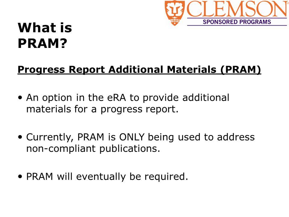 What is PRAM.
