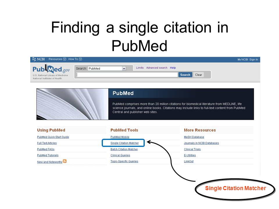 Finding a single citation in PubMed Single Citation Matcher