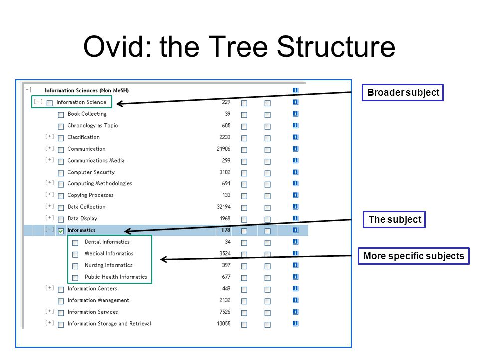 Ovid: the Tree Structure Broader subject The subject More specific subjects