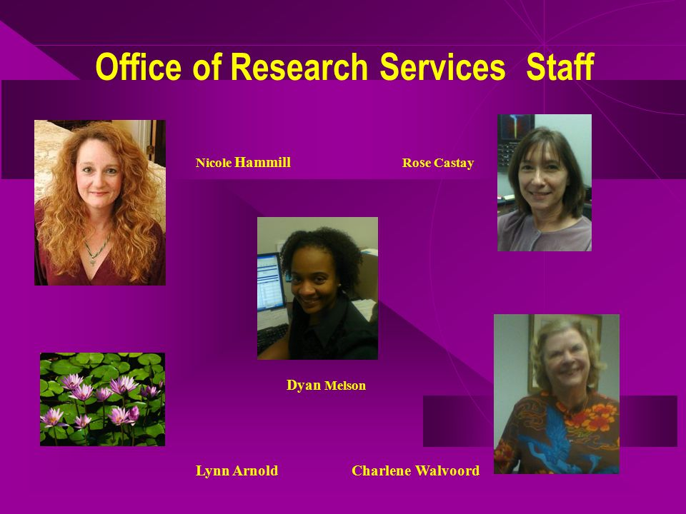 Office of Research Services Staff Nicole Hammill Ro s e Castay Dyan Melson Lynn ArnoldCharlene Walvoord