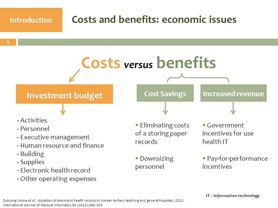 Costs and benefits: economic issues Introduction Investment budget Costs versus benefits - Activities - Personnel - Executive management - Human resou