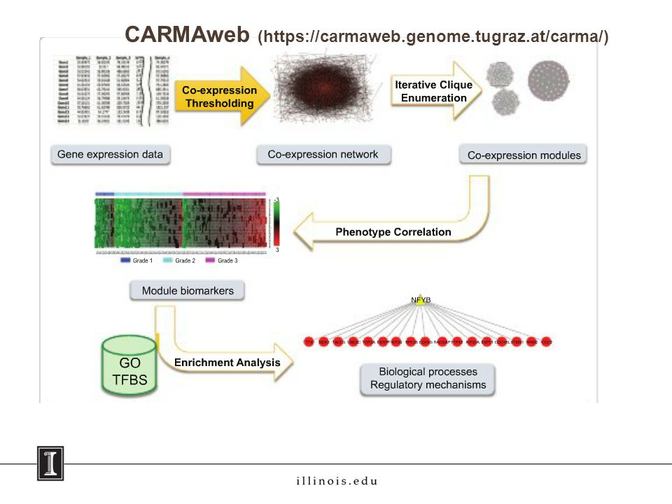 CARMAweb (https://carmaweb.genome.tugraz.at/carma/)