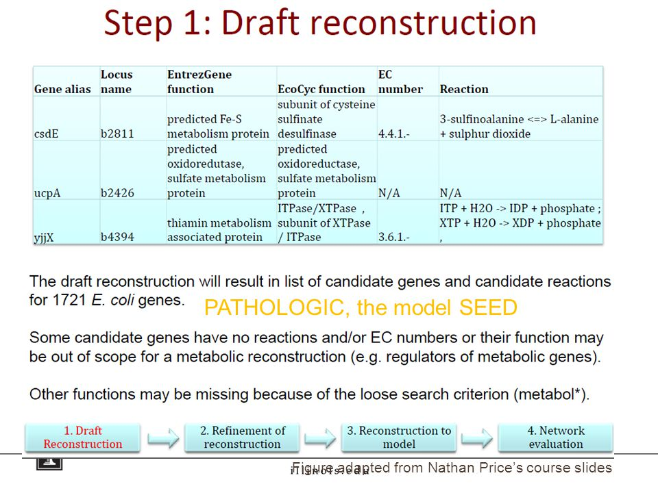 PATHOLOGIC, the model SEED Figure adapted from Nathan Price's course slides