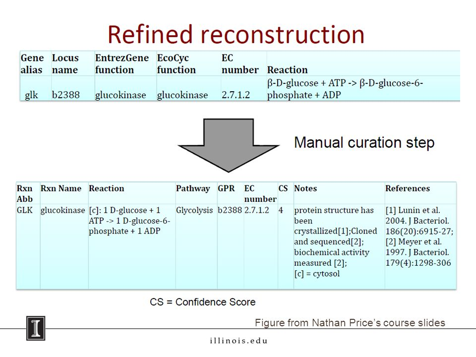 Figure from Nathan Price's course slides