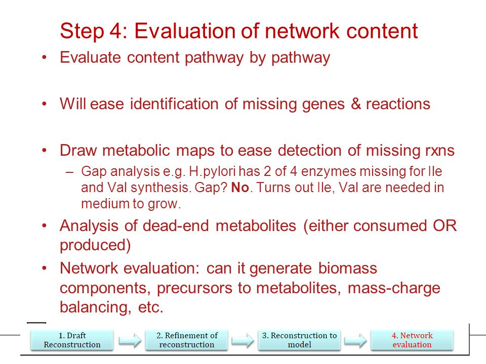 Step 4: Evaluation of network content Evaluate content pathway by pathway Will ease identification of missing genes & reactions Draw metabolic maps to ease detection of missing rxns –Gap analysis e.g.