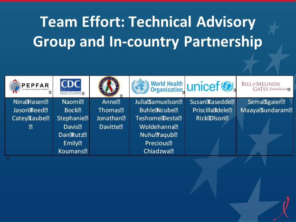 Team Effort: Technical Advisory Group and In-country Partnership