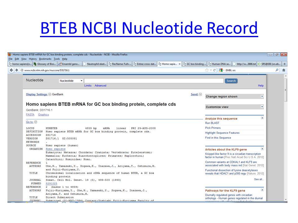 BTEB NCBI Nucleotide Record