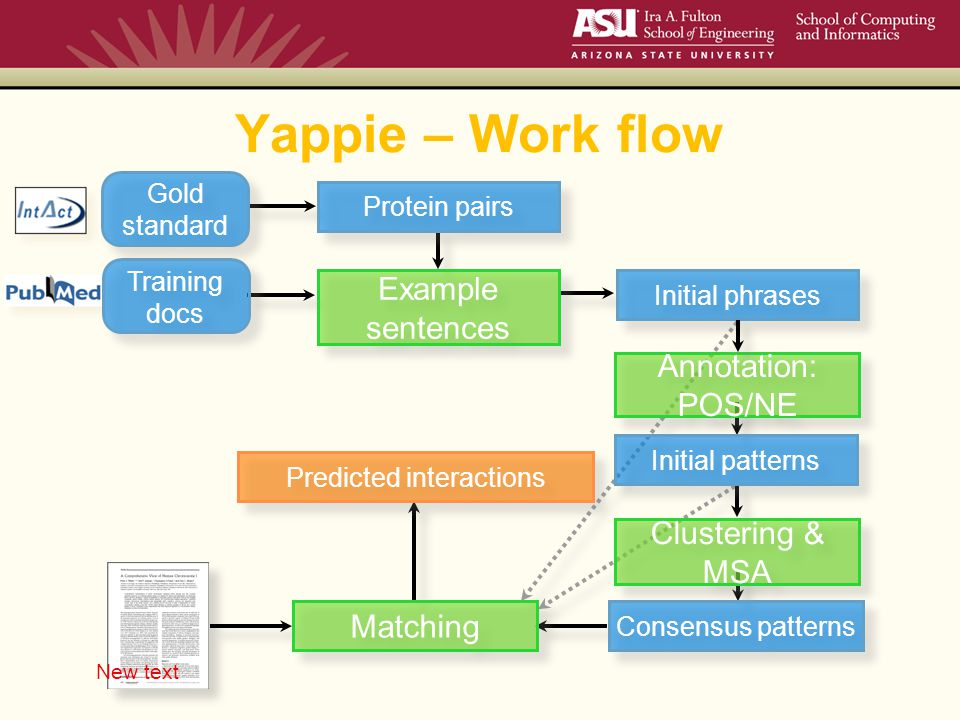 Yappie – Work flow Training docs Gold standard Protein pairs Example sentences Annotation: POS/NE Initial phrases Initial patterns Clustering & MSA Consensus patterns Matching Predicted interactions New text
