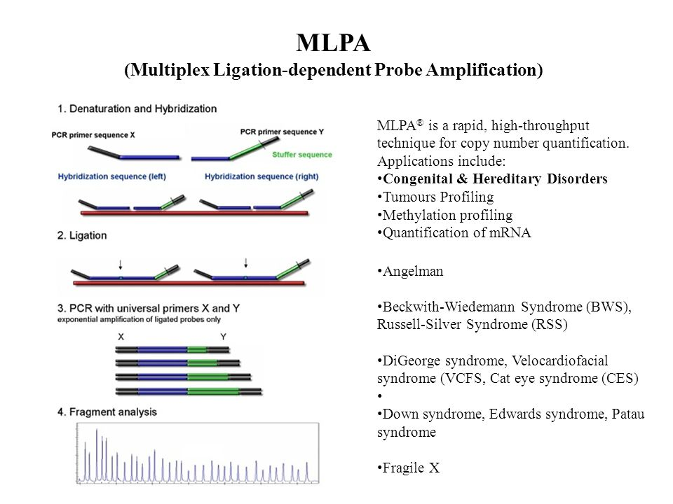 MLPA (Multiplex Ligation-dependent Probe Amplification) MLPA ® is a rapid, high-throughput technique for copy number quantification.