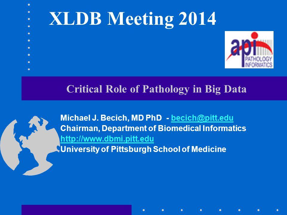 Critical Role of Pathology in Big Data Michael J. Becich, MD PhD - becich@pitt.edu Chairman, Department of Biomedical Informatics http://www.dbmi.pitt