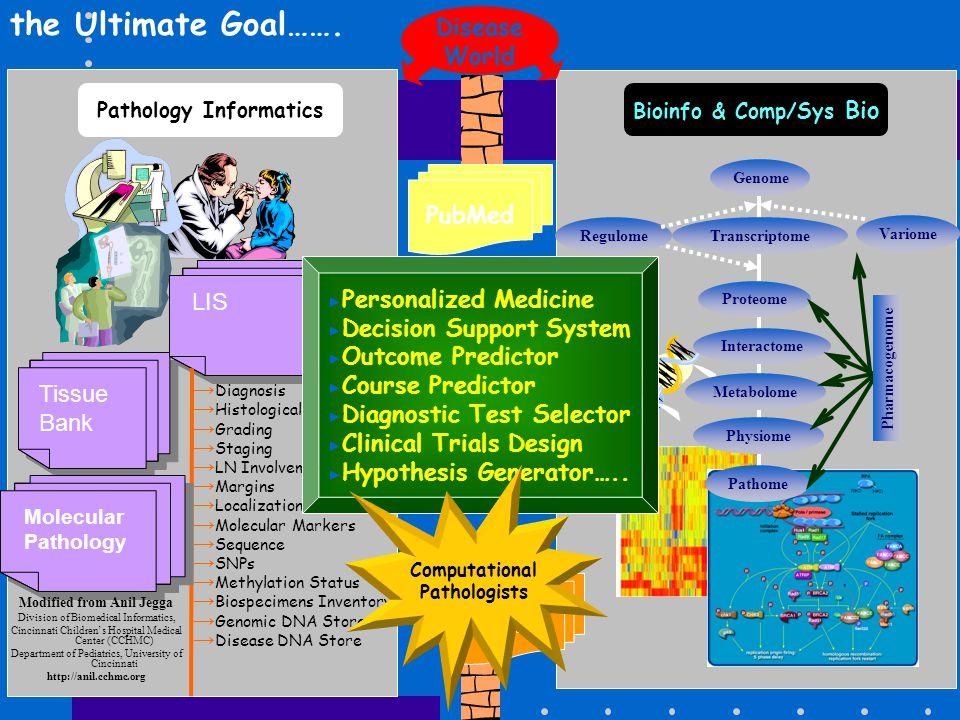 PubMed Pathology Informatics Tissue Bank LIS → Diagnosis → Histological Subtypes → Grading → Staging → LN Involvement → Margins → Localization and Siz