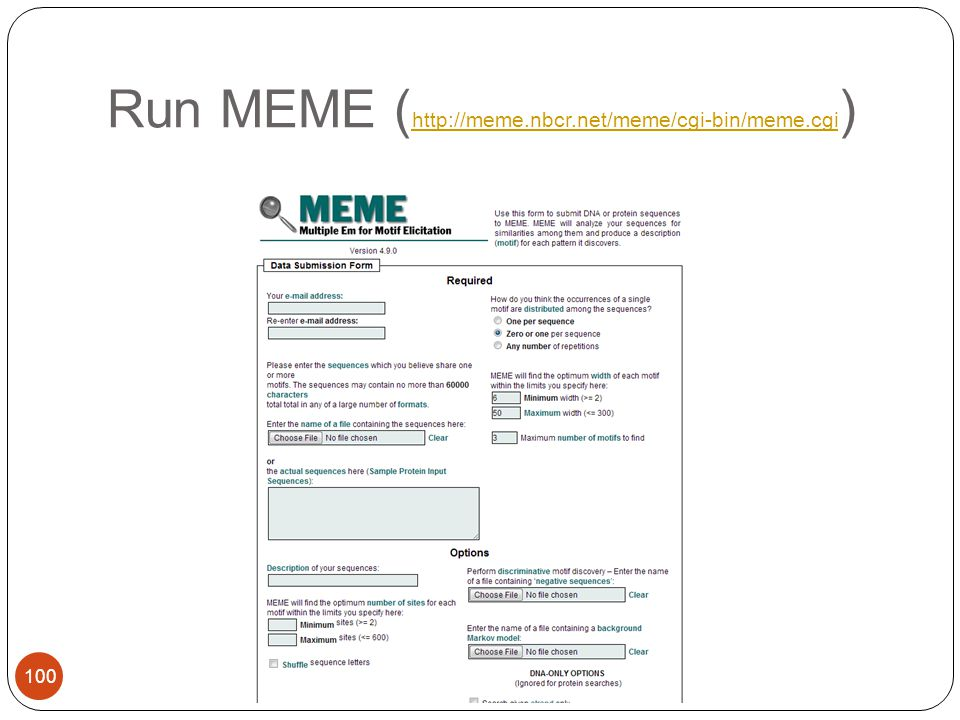 Run MEME ( http://meme.nbcr.net/meme/cgi-bin/meme.cgi ) http://meme.nbcr.net/meme/cgi-bin/meme.cgi 100