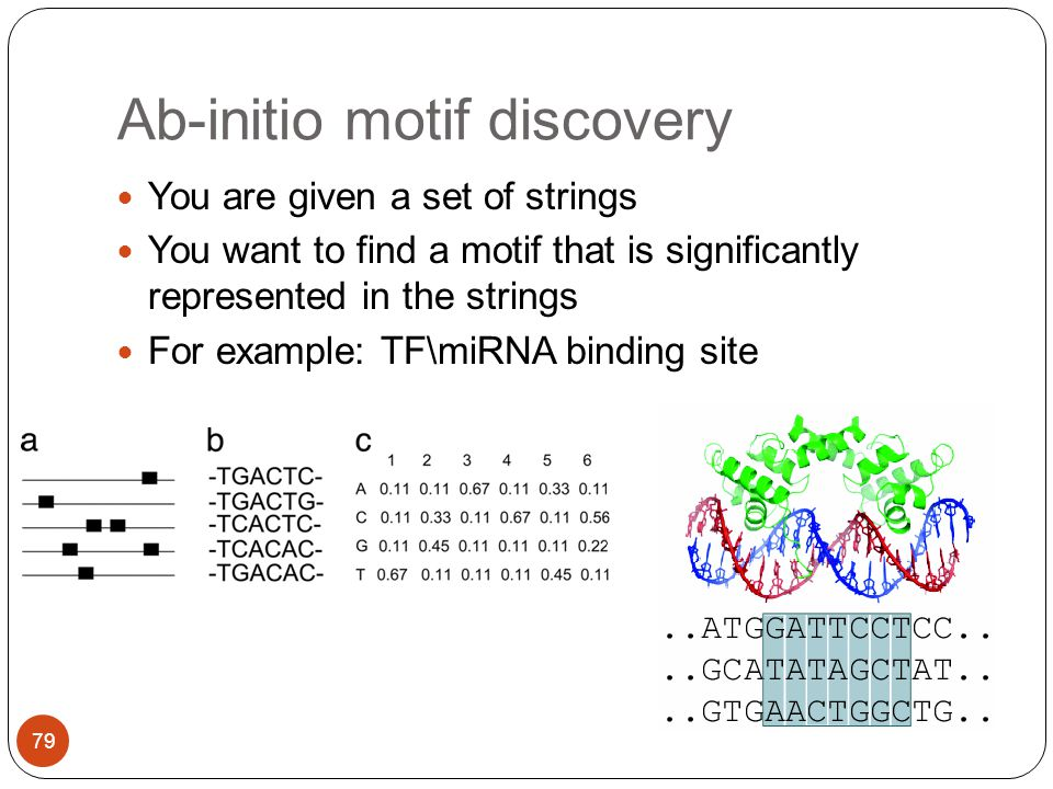 Ab-initio motif discovery You are given a set of strings You want to find a motif that is significantly represented in the strings For example: TF\miRNA binding site 79