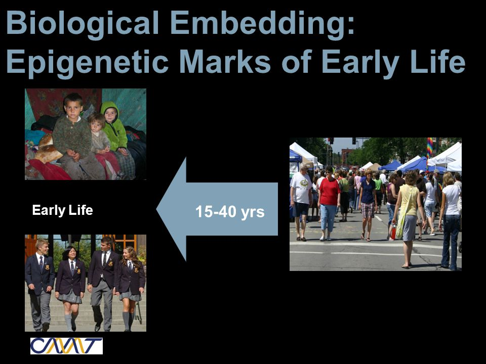 Biological Embedding: Epigenetic Marks of Early Life Early Life 15-40 yrs